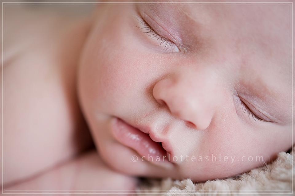 Libby, Montana Newborn Photographer, Photography, Columbia, South Carolina
