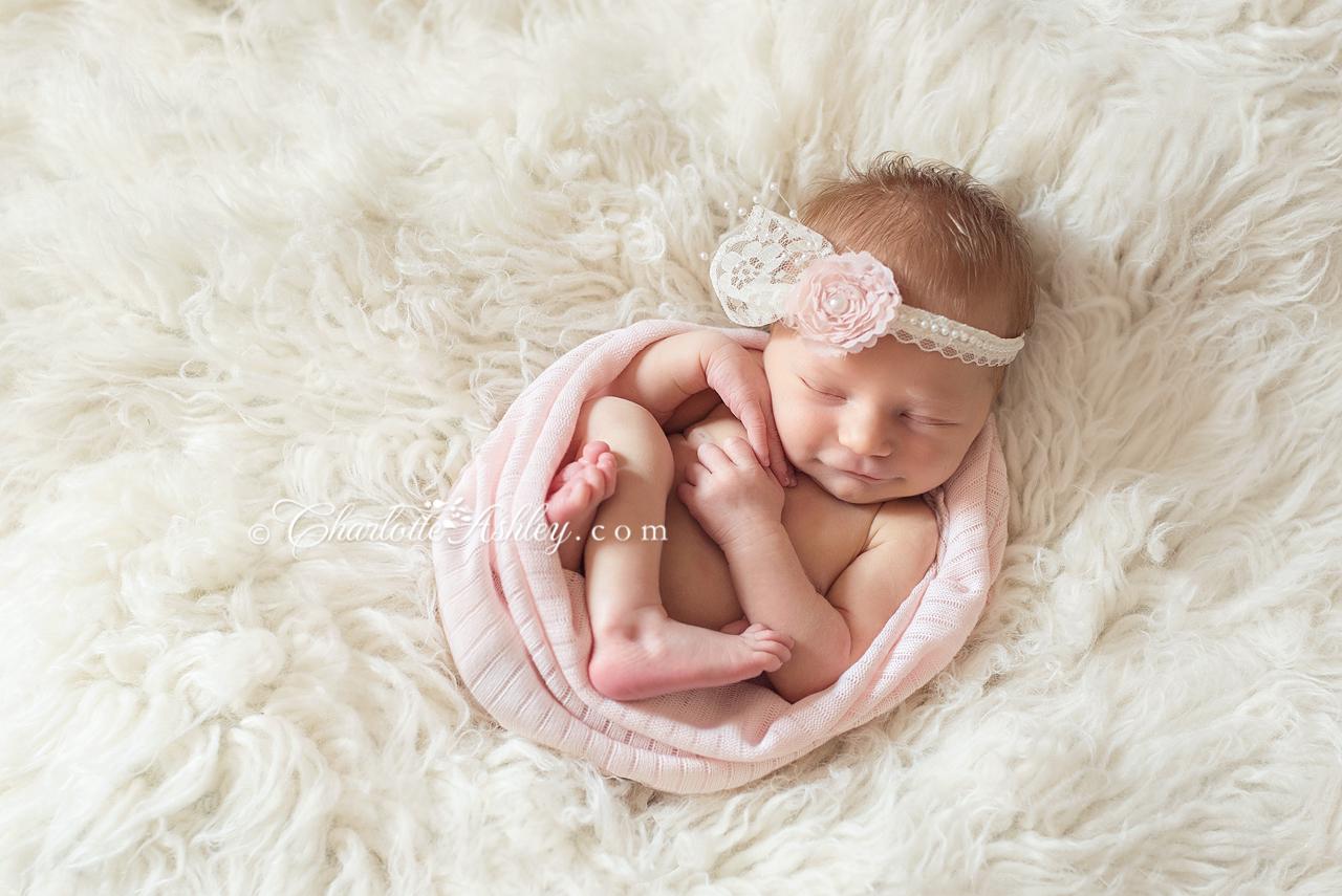 Baby Haven   SC Newborn Photographer