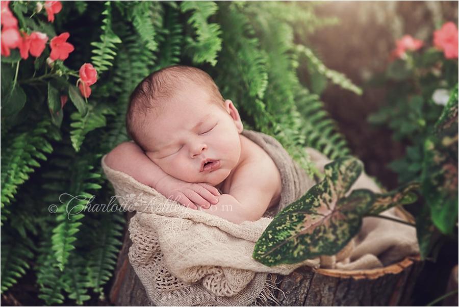 Robert   Fairfield County, SC Outdoor Newborn Session
