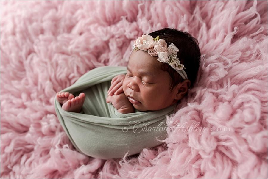 Olive_newborn__0009.jpg